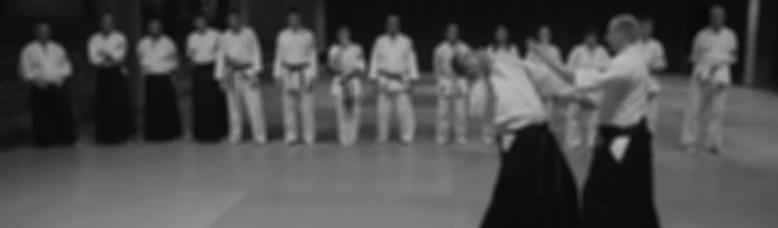 zelfverdediging-hakkoryu-jujutsu-leuven